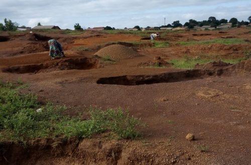 Article : Guinée: ces femmes qui creusent le sol pour ne pas avoir le ventre creux