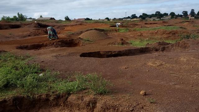 Guinée femmes creusent sol