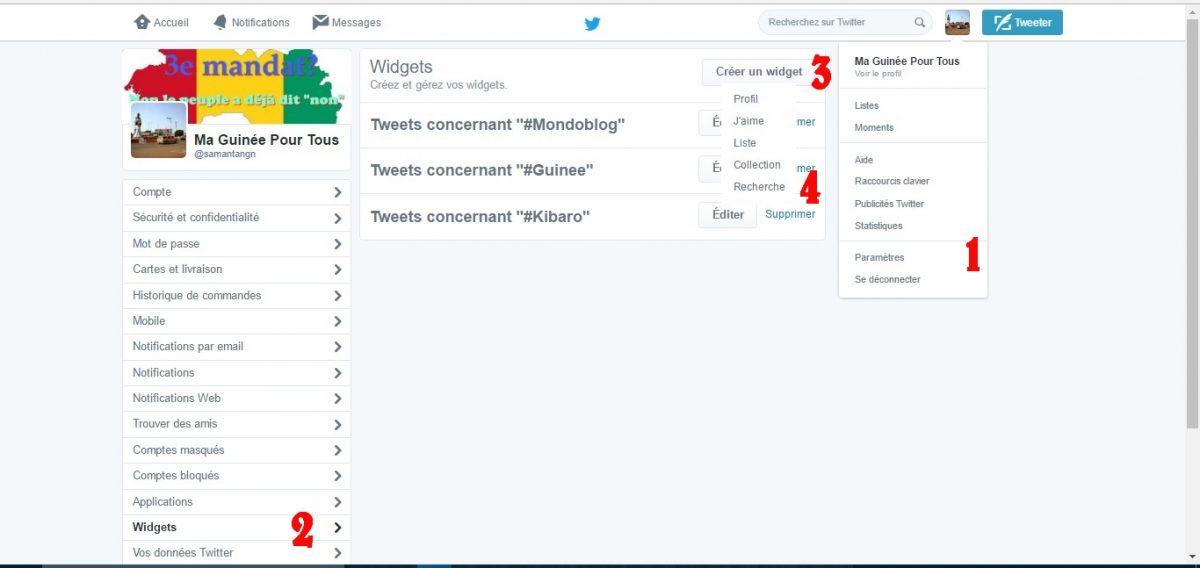 widget-twitter-ma-guinee-pour-tous-3